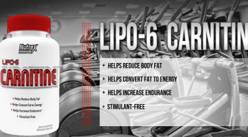 Lipo-6-Carnitine-Reviews
